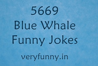 Blue Whale Funny Jokes