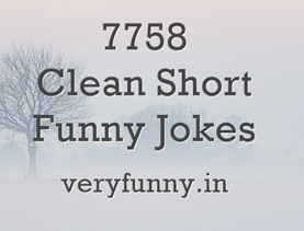 Clean Short Funny Jokes