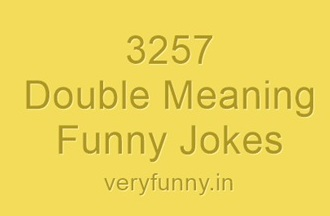 Double Meaning Funny Jokes