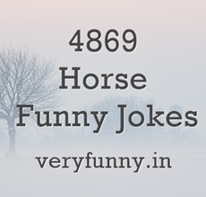 Horse Funny Jokes